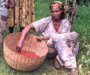 female_coffee_farmer