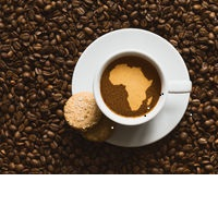 Kenyan Coffee Value Increase
