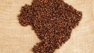 coffee-brazil-360x240