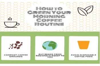 How to Green a Morning Routine