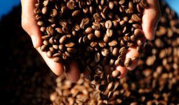 Coffee-beans-e1500394396355