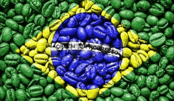 brasil-flag-made-by-coffee-beans-copertina