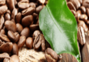 British Coffee Association Launched First Sustainability Mission