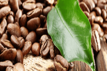 sustainability coffee copertina
