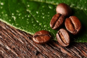 Two Key-Points To Bear In Mind For The Green Coffee Business