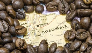 The Colombian government will not be offering immediate subventions to coffee farmers due to budget constraints this year. This comes at a time when coffee producers are plagued with low prices and heavy rains, said the head of the Coffee Growers' Federation.