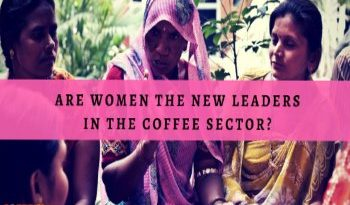 Are Women The New Leaders In The Coffee Sector?