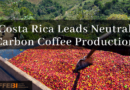 Costa Rica Leads Neutral Carbon Coffee Production