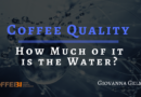 Coffee Quality: How Much of it is the Water?