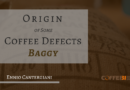 Origin of Some Coffee Defects – «Baggy»
