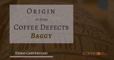 Origin of Some Coffee Defects - «Baggy»