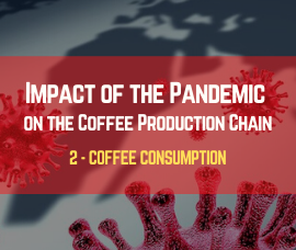 Covid-19: Impact of the Pandemic on Coffee  Consumption (Part 2)
