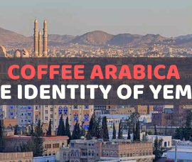Coffee Arabica – The identity of Yemen